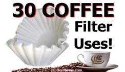 30 Coffee Filter Uses