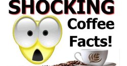 SHOCKING Coffee Facts