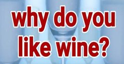 Why Do You Like Wine?