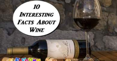 10 Interesting Facts About Wine That You May Not Know