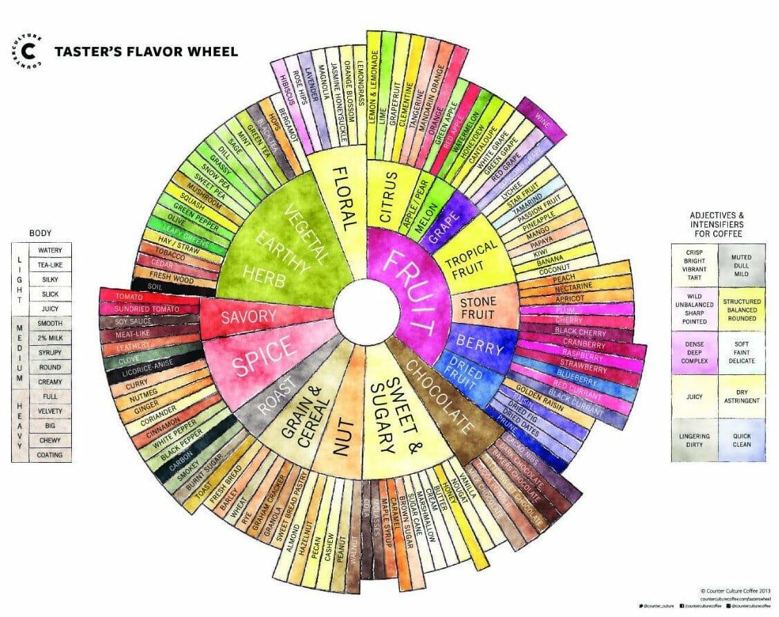 The Flavor Wheel