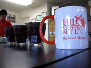 Cupping at the Hilo Coffee Mill
