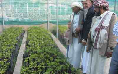 Yemen Coffee Sector Featured at U.S. Trade Events