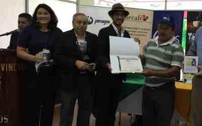 Ecuador Taza Dorada Robusta Competition Results