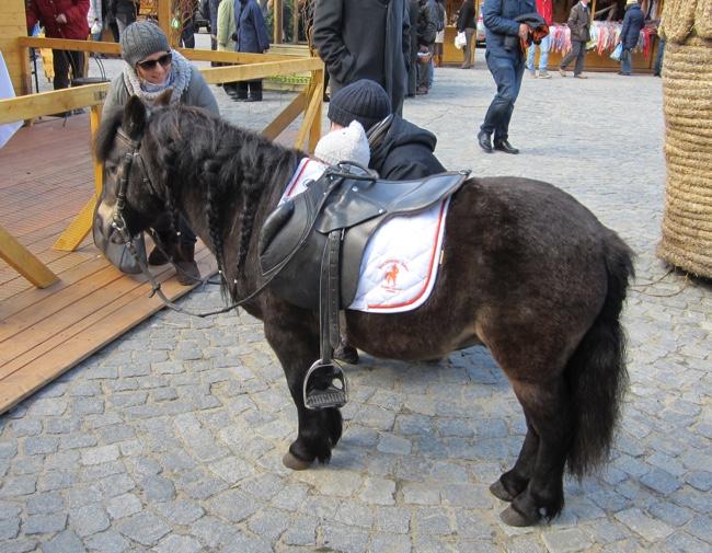 krakow easter market pony 2