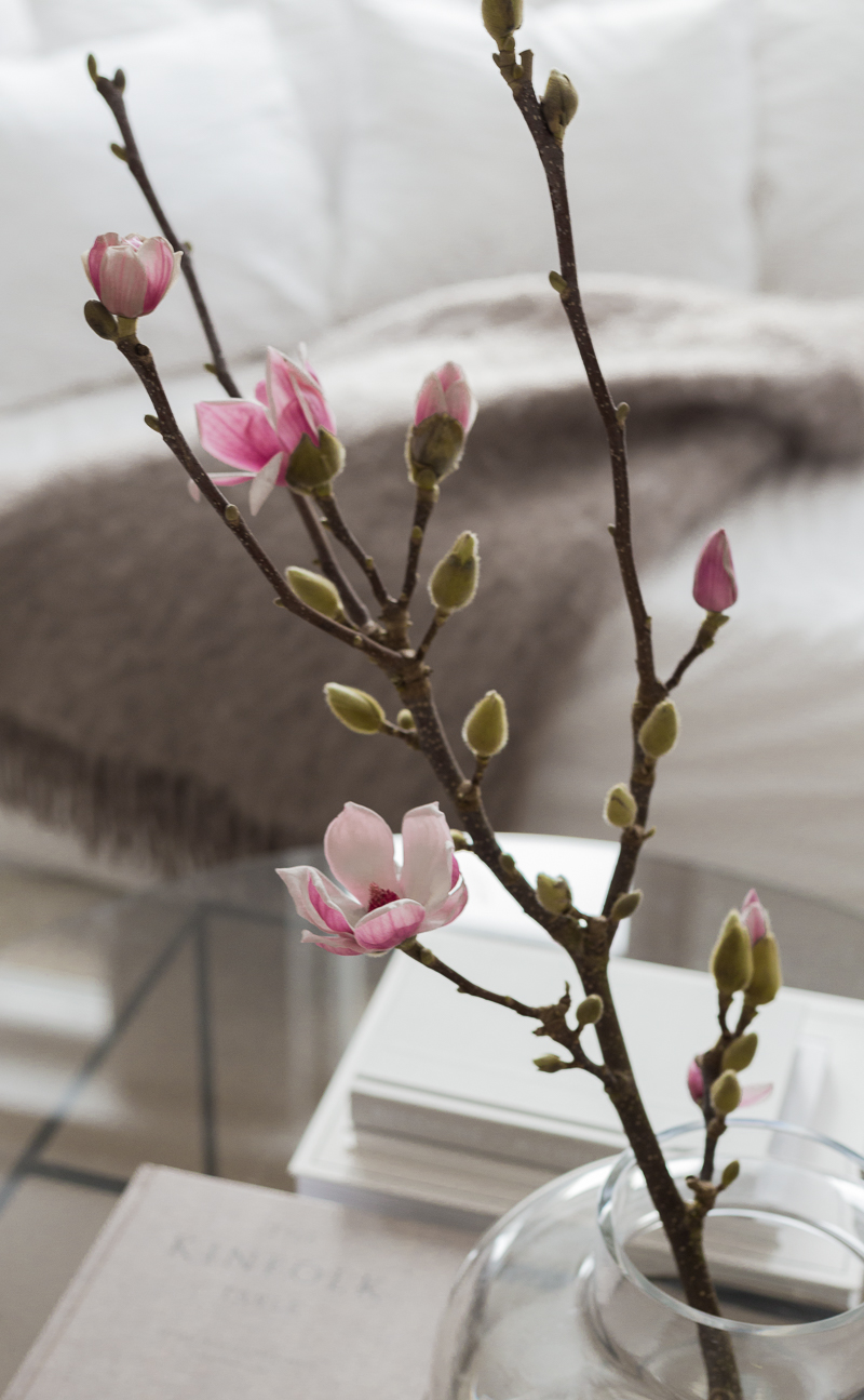 miten magnolian saa kukkimaan, magnolian hoito-ohjeet