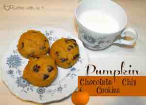 pumpkin chocolate chip cookies 1