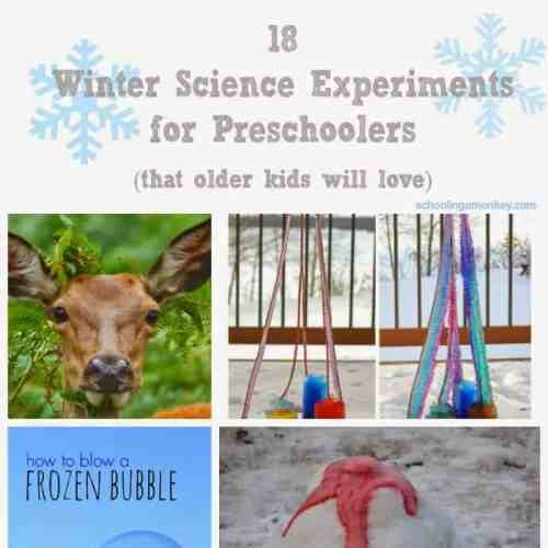 winter science for preschoolers square (1)