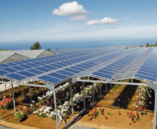 panneau photovoltaique agricole