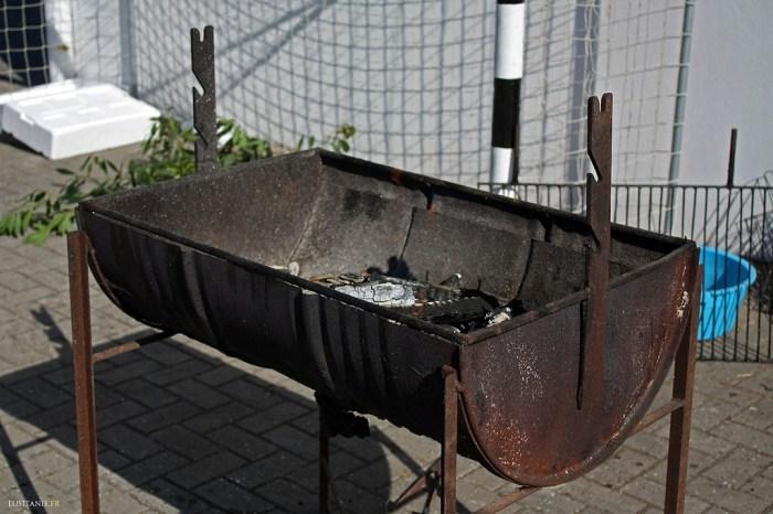 barbecue tourne broche electrique