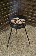 barbecue bois et gaz
