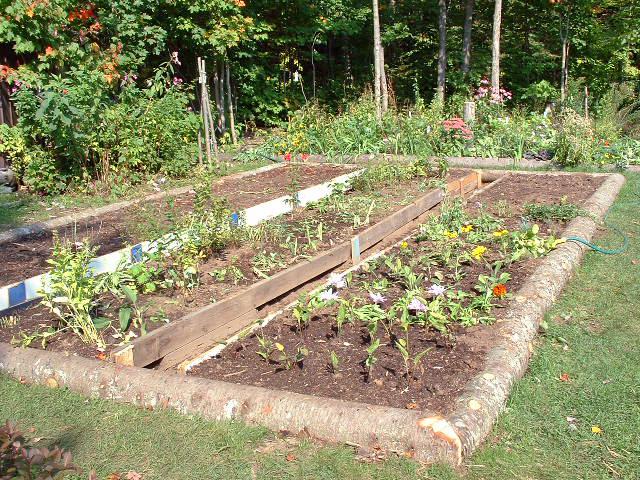 installer arrosage automatique au jardin