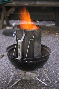 charbon de bois weber