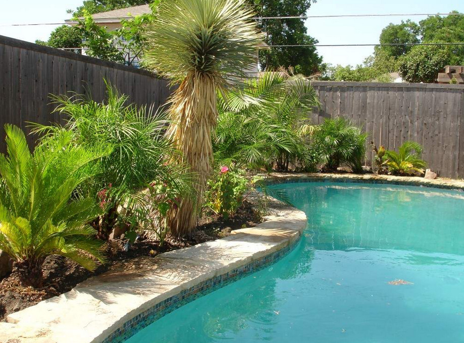 Backyard Swimming Pool Landscaping Ideas | Pool Design Ideas on Backyard Pool Landscape Designs id=37887