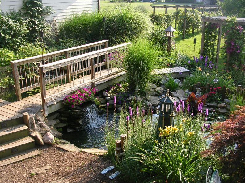 Koi Pond Design Pictures