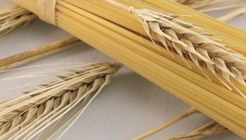 Crolla il prezzo del grano, quotazione scende a 22 euro al ...