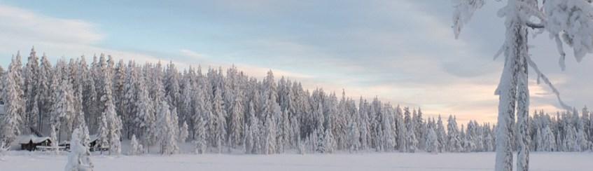Finnland Wald am See, verschneit, zugefroren