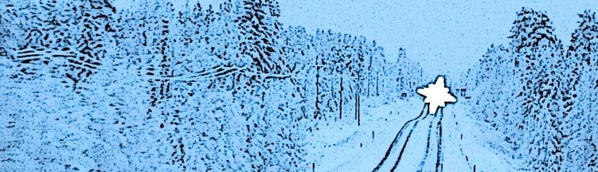 Finnische Strasse im Winter mit Auto entgegenkommend