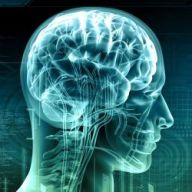 Enhances Brain Function