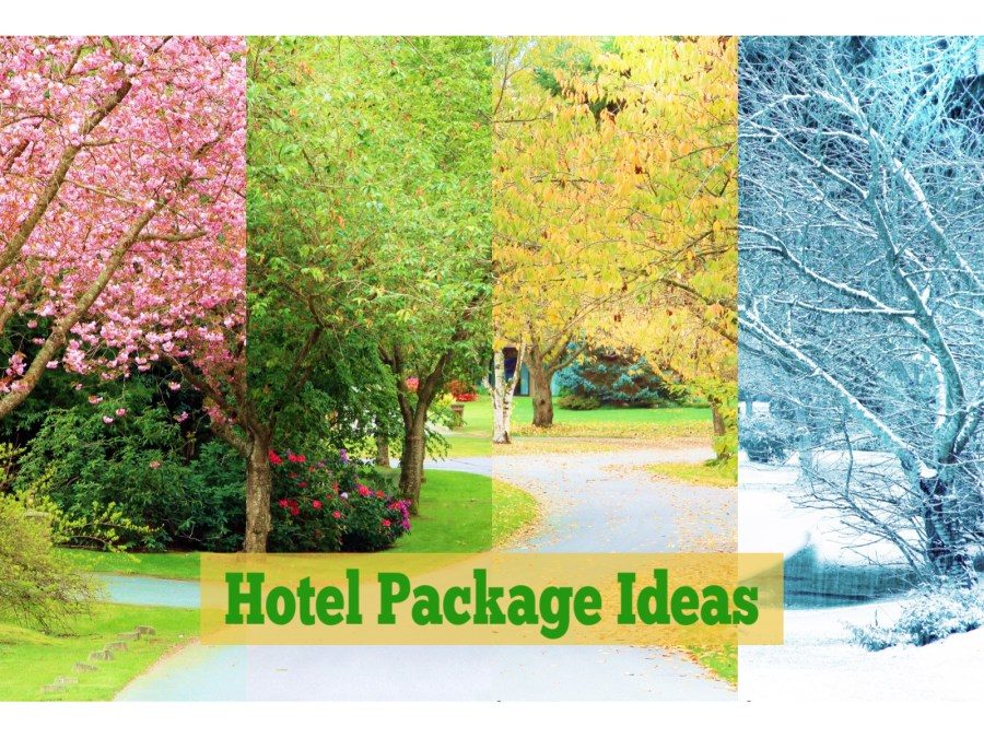 Hotel Packages: Who, What, When, Why, Where and How