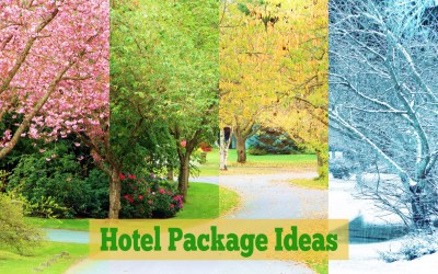 Hotel Packages: Who, What, When, Why, Where