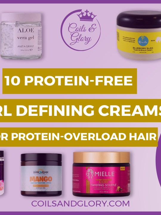 protein free curl defining products