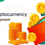 Multi cryptocurrency wallet development