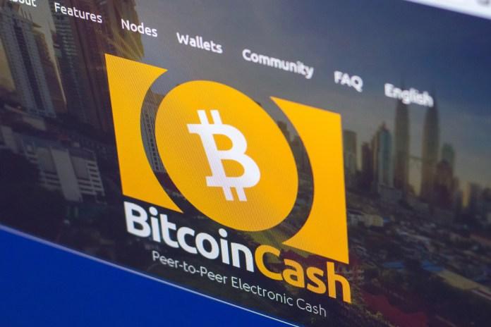 BCH Bitcoin Cash Gizlilik
