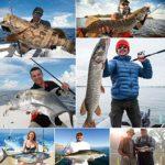 Magreel Ligne Tresse Pêche 300m 6-80LB Bobine de Fils de Pêche Résistant à l'abrasion pour Pêche à Leurre en Mer en Eau Douce