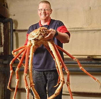homem segurando uma Spider Crab