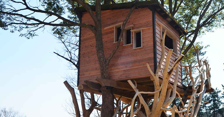 casa na árvore de Takashi Kobayashi