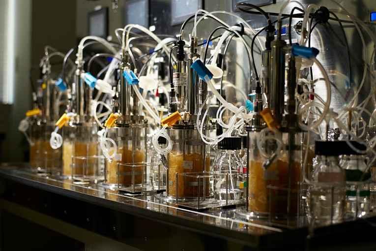 Máquinas de laboratório para fermentação