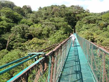 cr_monteverde_pontes
