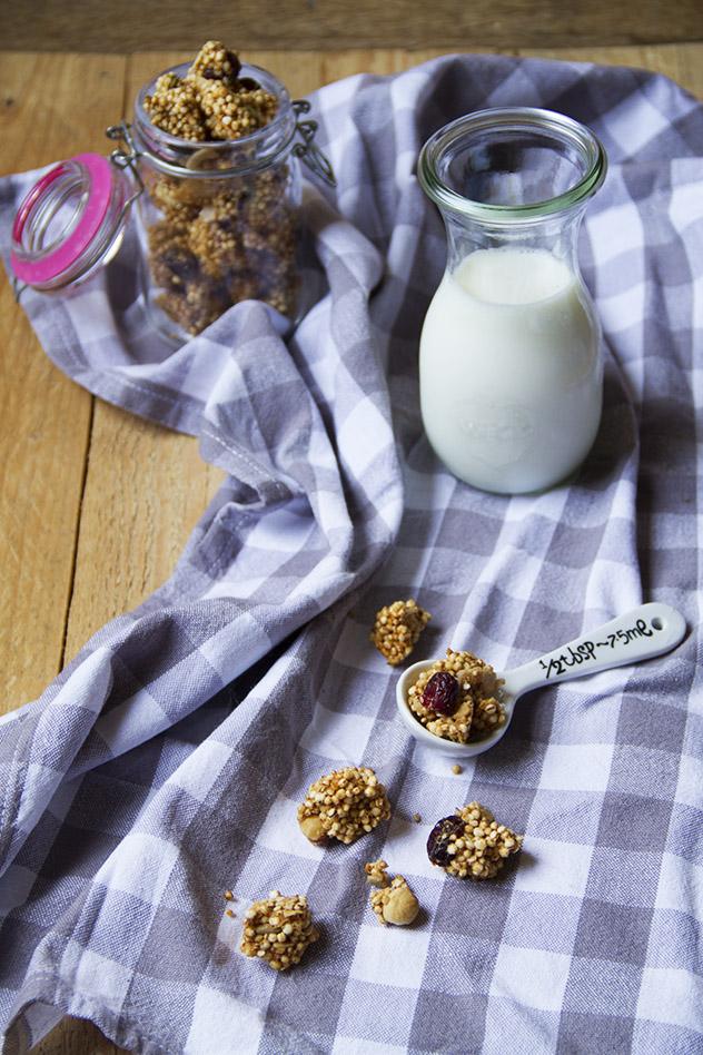 granola-con-cranberries-e-cocco_01