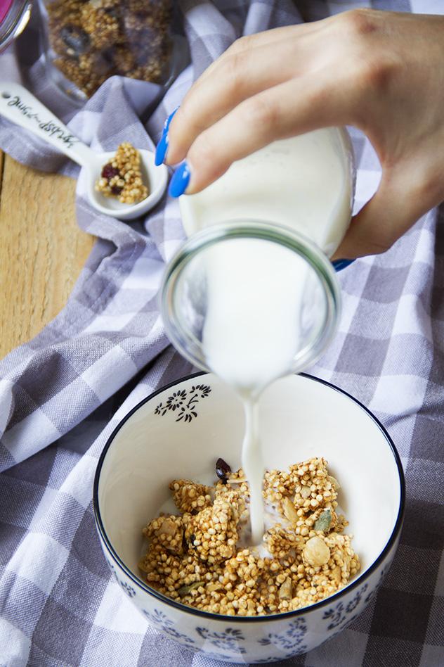 granola-con-cranberries-e-cocco_04