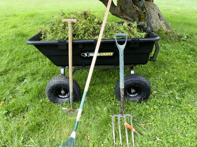10 cu ft weeds in a gorilla cart