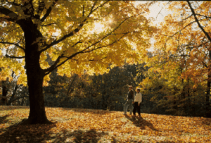 Take an autumn break without blowing your Christmas budget
