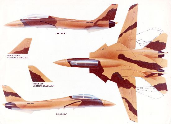 Grumman sells the F-14 to Iran