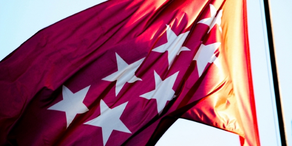 Bandera de Madrid por Julian Rotela Rosow