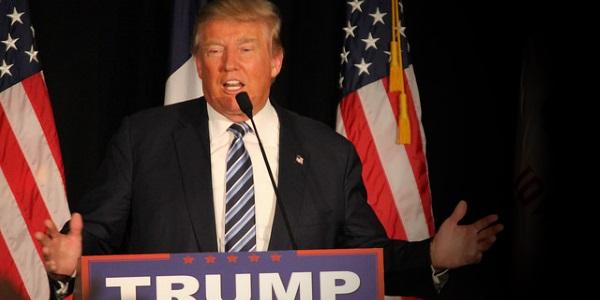 Donald Trump por Matt Johnson