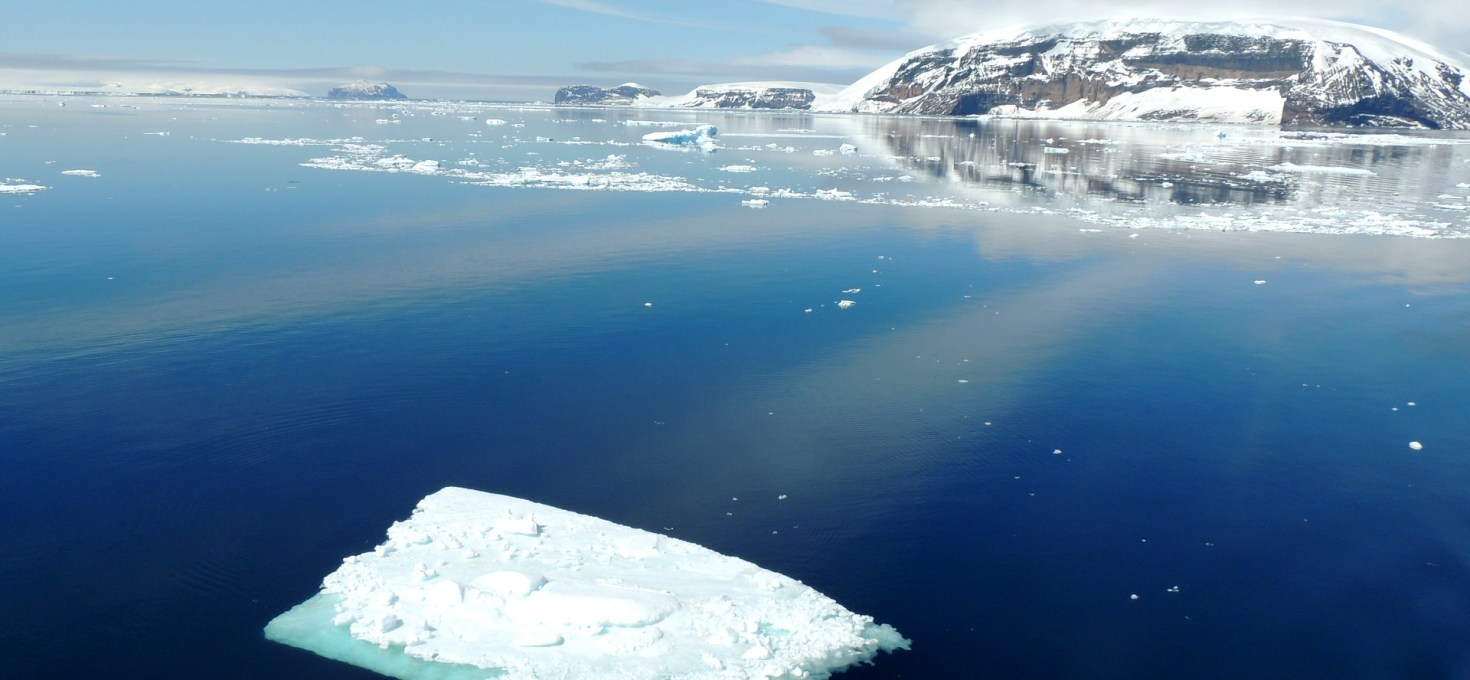 Antarctic Thresholds – Ecosystem Resilience and Adaptation: a new SCAR-Biology Programme