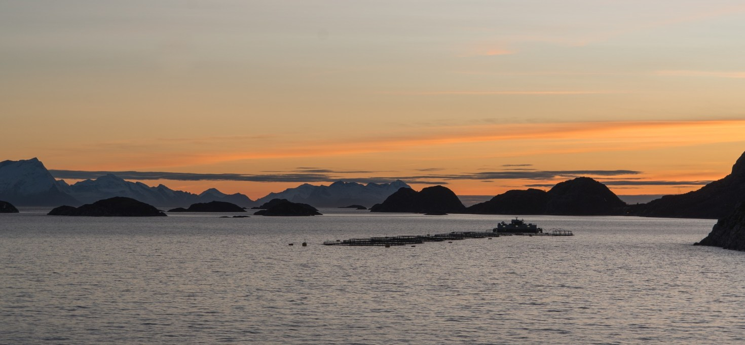 A meta-analysis on integrated multitrophic aquaculture