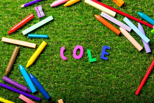 láìces sobre una carpeta verde, al centro la palabra COLE.