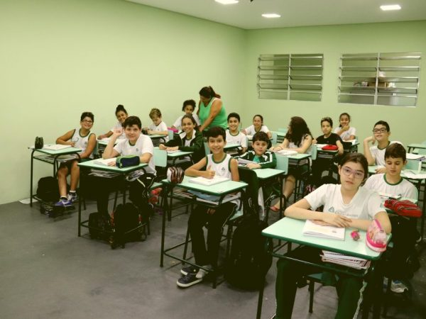 5º ano ensino fundamental