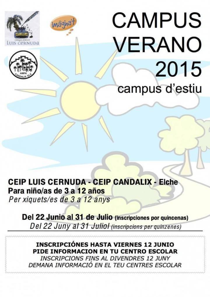 CartelCampusVerano2015