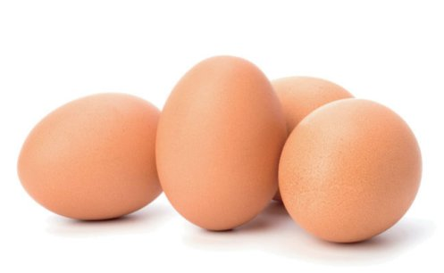 Resultado de imagem para ovos