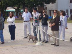 expo-mascotas-2008-43