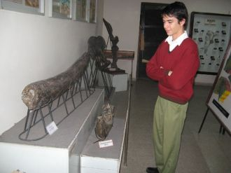 museo-de-ciencias-naturales-10
