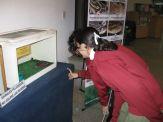 museos-de-ciencias-naturales-3ros-16