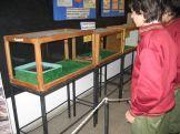 museos-de-ciencias-naturales-3ros-26